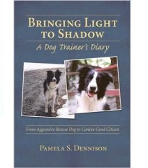 Bringing Light to Shadow von Pamela Dennison